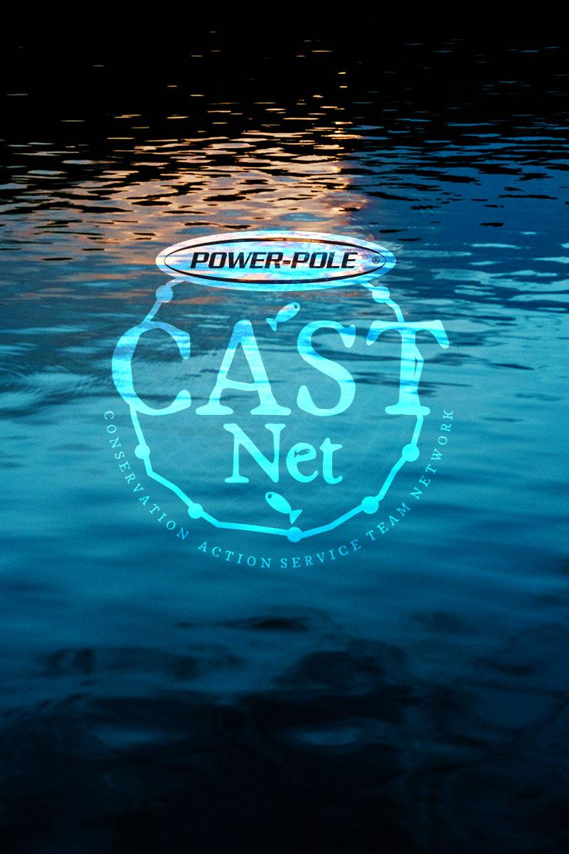 CastNet Logo
